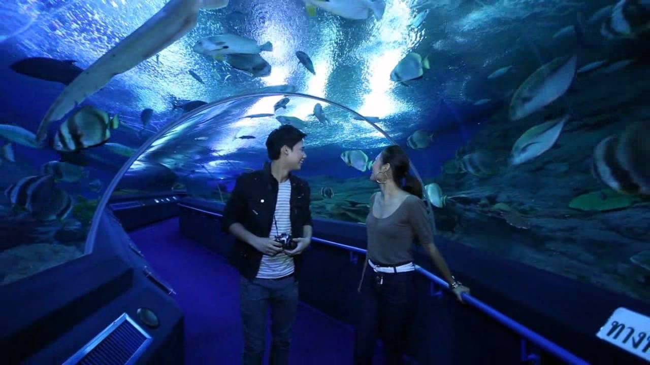 underwater world pattaya thailand pattaya show ticket