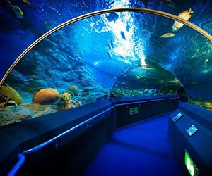 Underwater World Pattaya