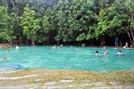 Krabi Rainforest Discovery Tour