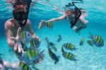 Snorkeling Tour Koh Tan & Koh Mudsum