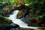 Khao Yai National Park Tour