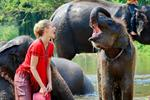 One Day Elephant Care & Mahout Training Course