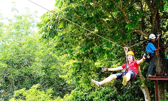 Image result for Pattaya Flight of the Gibbon Adventure