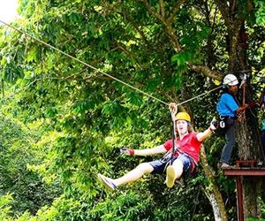 Flight of the Gibbon Chonburi | Pattaya