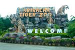 Sriracha Tiger Zoo Chonburi