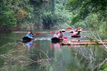 Khao Sok Nature Tour (Full Day)