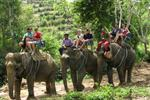 Krabi Nature & Adventure Tour