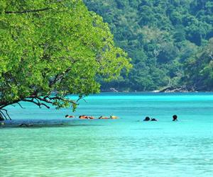 Surin Islands Tour by Speedboat