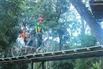Pong Yang Zipline & Jungle Coaster