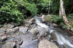 Pala U Waterfall Kaeng Krachan National Park Tour