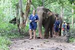 Tong Bai Elephant Tour