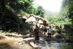 Jungle Mountain Waterfall Trek