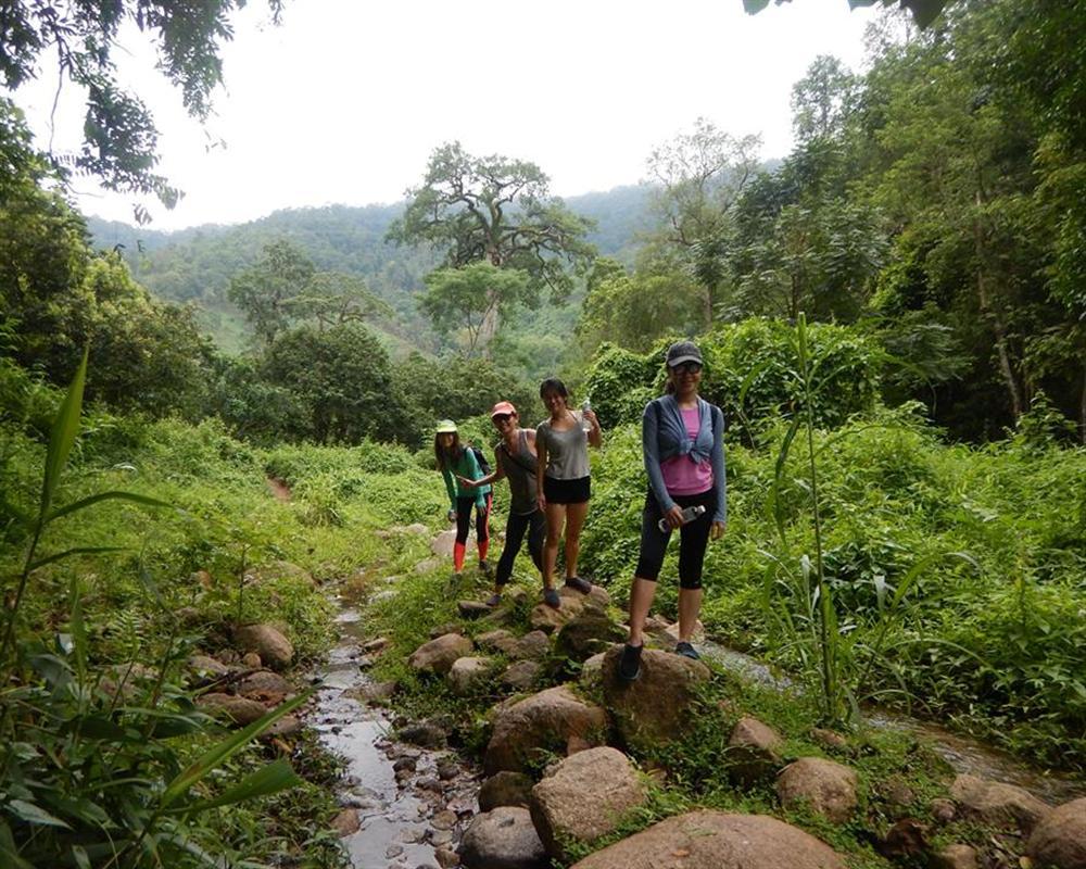 Jungle Trek and White Water Rafting Tour