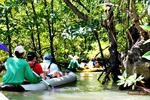 James Bond Island by Longtail Boat & Safari Tour