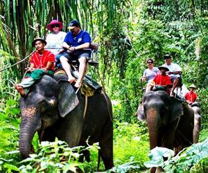 Samui Safari Tour Program C 7in1