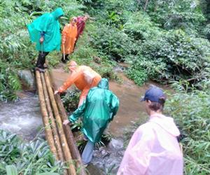 1 Day Chiang Rai Trek Only Walk