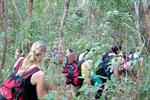 Jungle Trek Chiang Rai and Adventure tour