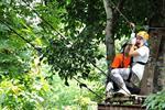 Phoenix Adventure Park Chiang Mai