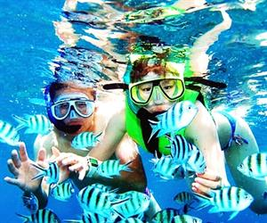 Half Day 4 Islands Snorkeling Tour Koh Chang by Speed Boat | Koh Chang