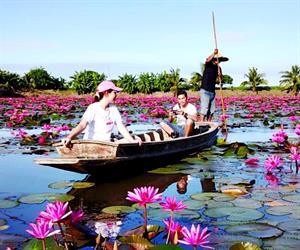 Red Lotus Floating Market Tour