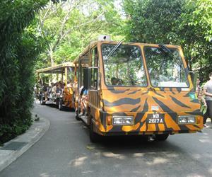 Admission Park Hopper Plus 4 IN 1 Singapore